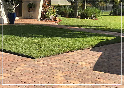 Gutierrez & Son Lawn Care – Best Lawn Care Services in Central Florida