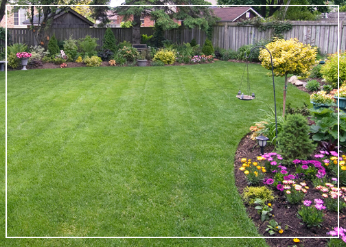 Mowing and Edging central Florida by Gutierrez and sons lawn care